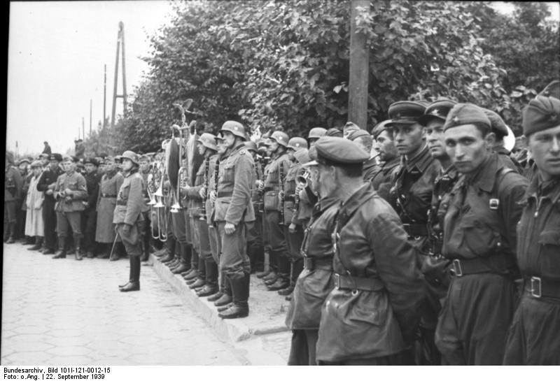 В ближайшие годы Польша увеличит армию на 50%, - министр обороны Мацеревич - Цензор.НЕТ 1320